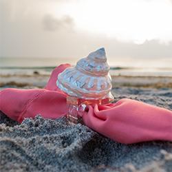 Pink Napkin Ivory Shell-250